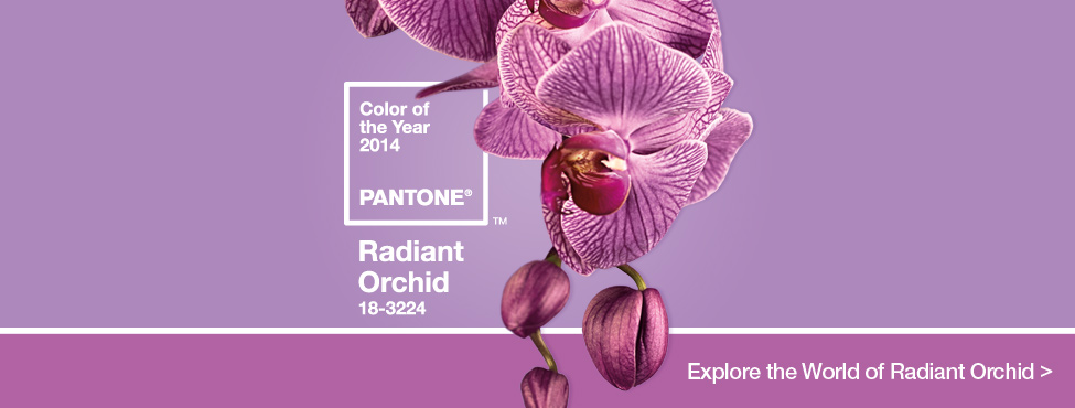 radiant_orchid_2014_Final
