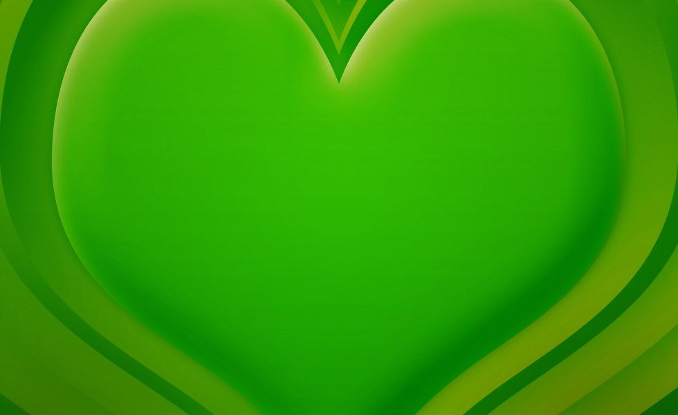 Lime Green | Colour Harmonie